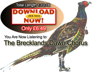 Ease your stress with the Brecklands Dawn Chorus